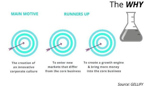 grafico su corporate venture